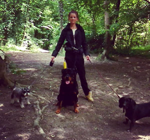Laura Regan - Dog Walking - High Wycombe
